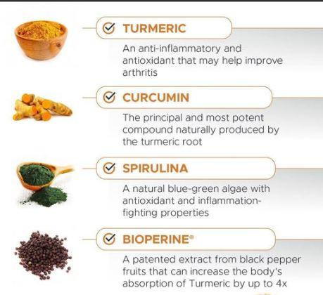 PetHonesty Turmeric Curcumin Soft Chews Ingredients