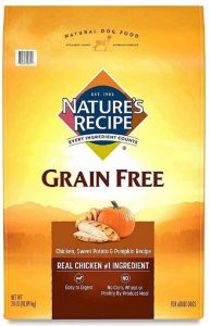 Nature's Recipe Dry Dog Food Grain Free