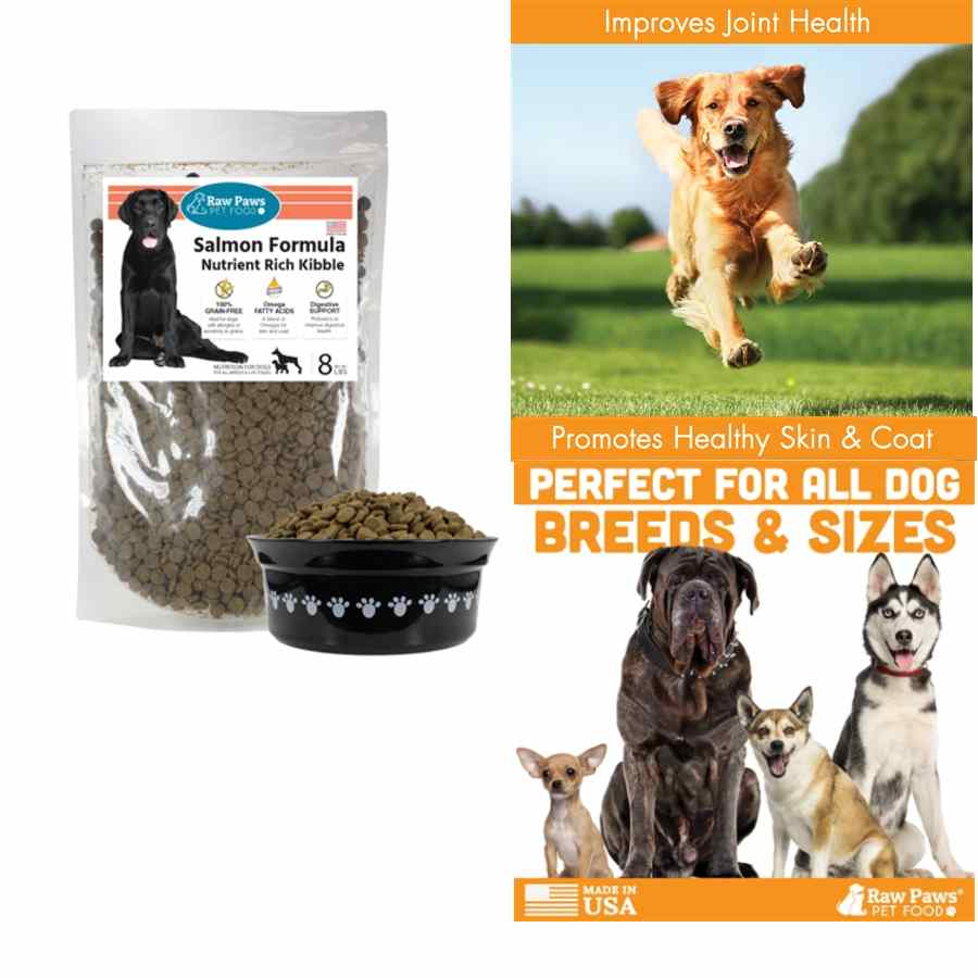 Dog Food for allergy - Grain free salmon kibble by Raw Paws