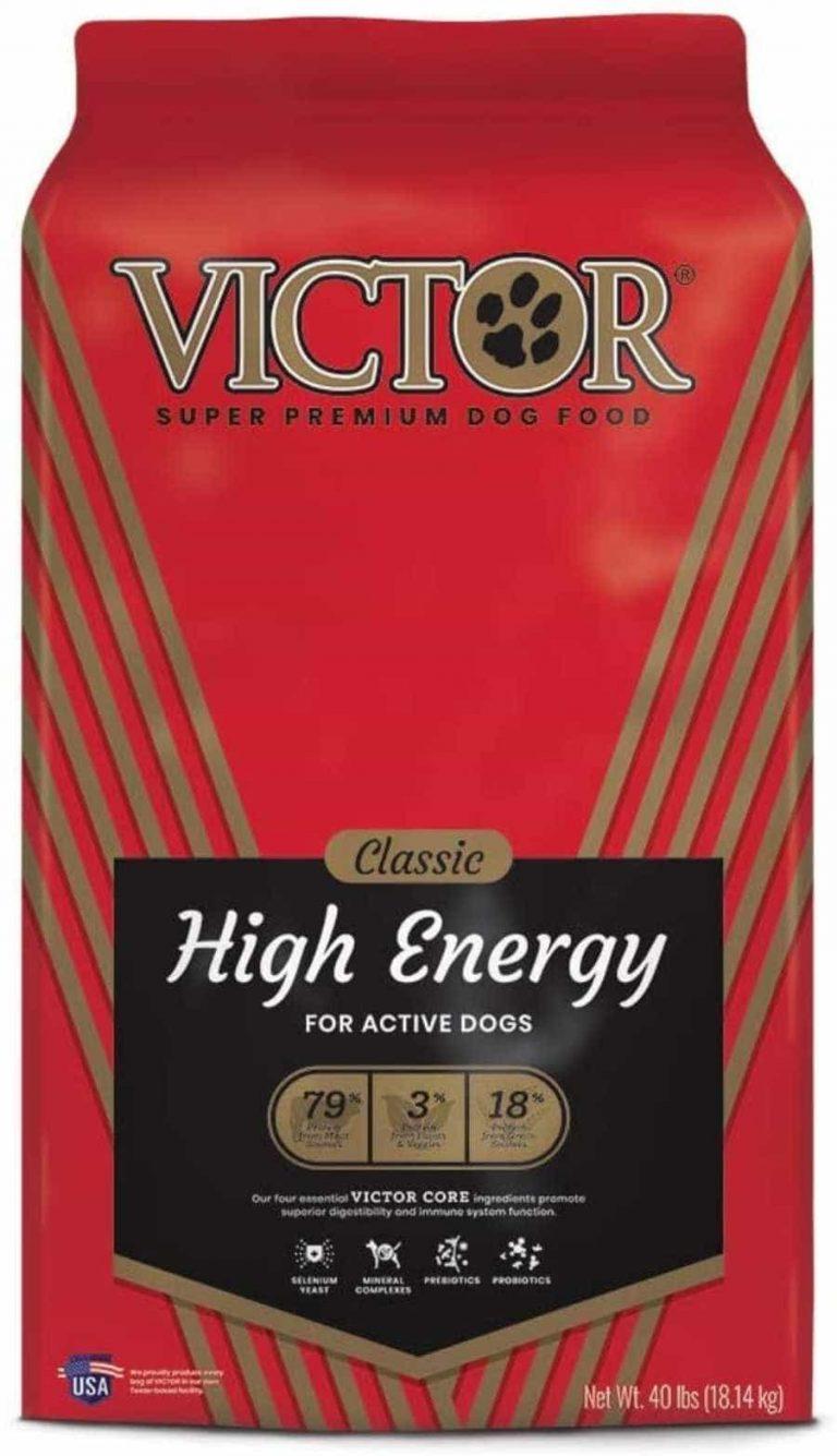 Victor classic high energy dog food
