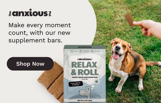 CBD Dog Treat For Anxiety Relief - Anxious Pet