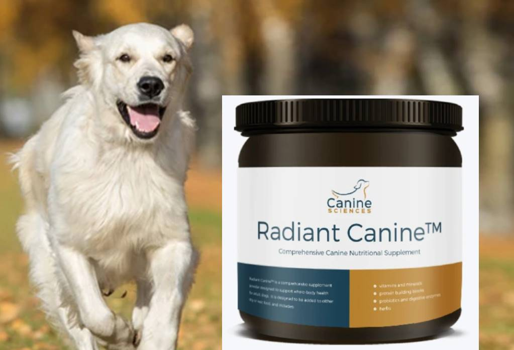 Dog Nutritional Supplement by Radiant Canine