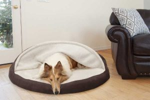 Snuggery Dog Bed
