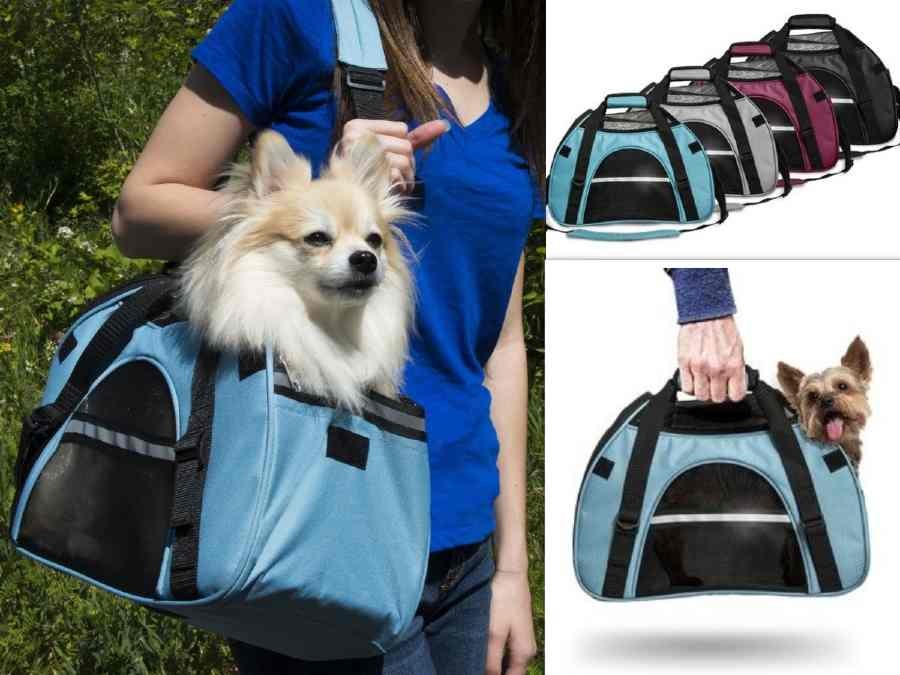 stylish pet carrier