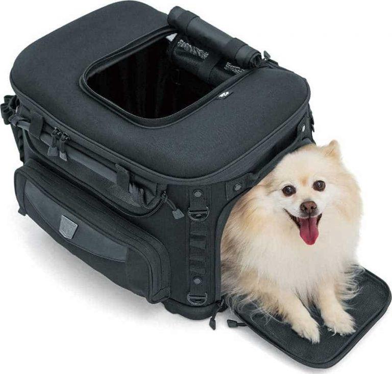 Kuryakyn motorcycle dog carrier
