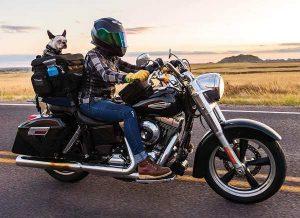 Motorcycle Dog Carrier - Kuryakyn 5288 Grand