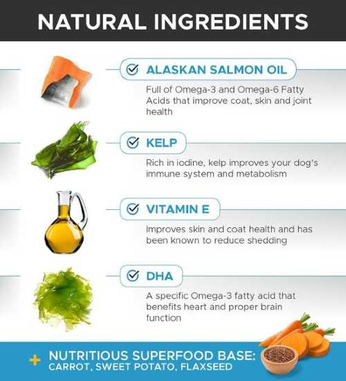 PetHonesty Omega Salmon Supplement - Natural Ingredients