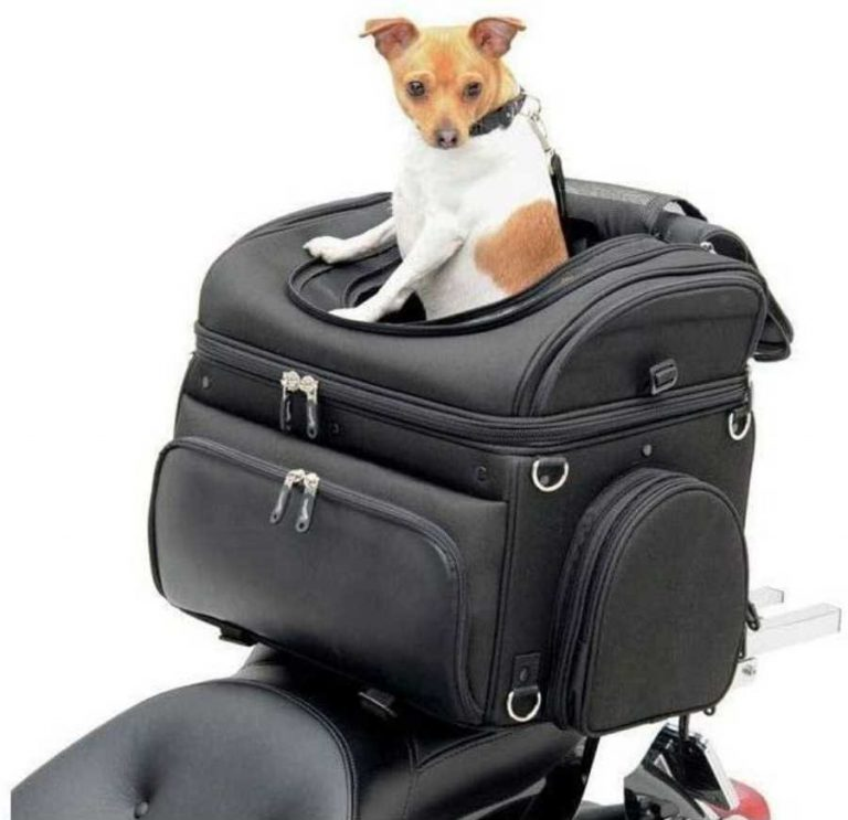 Saddlemen Bike dog carrier