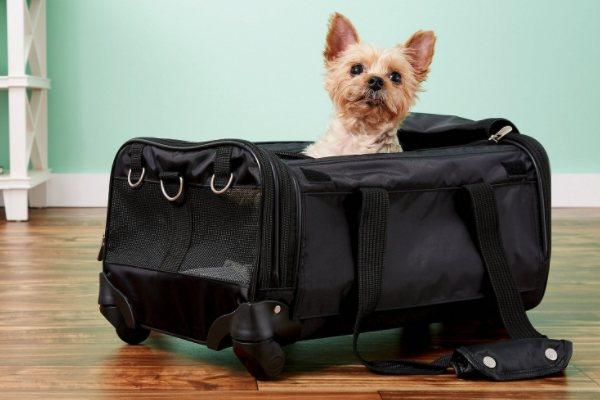 Sherpa Ultimate on Wheels Dog Carrier Bag