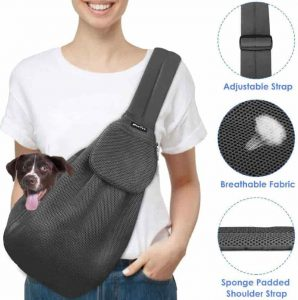 Slowton Pet Carrier