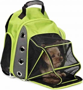 Zanies backpack carrier