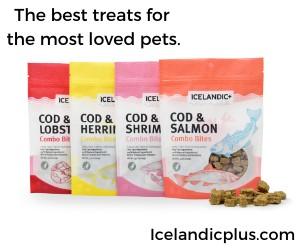 Omega-3-treats-for-dog-skin-coat