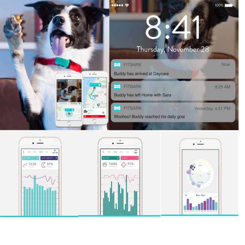 FitBark Dog GPS Tracker
