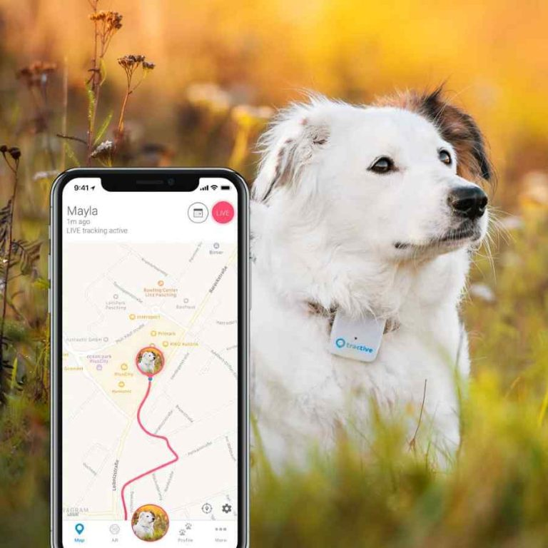 GPS Tracker Smart Collars