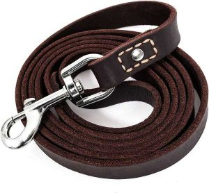 6 Foot Leather dog leash