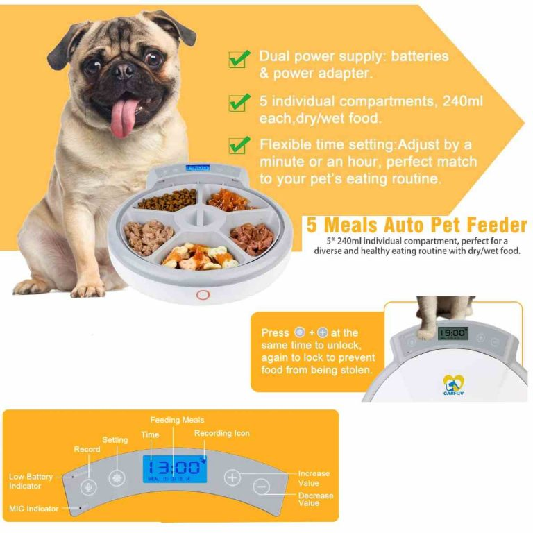 Casfuy Auto Pet Feeder, 5 Meals of Dry & Wet Food Dispenser
