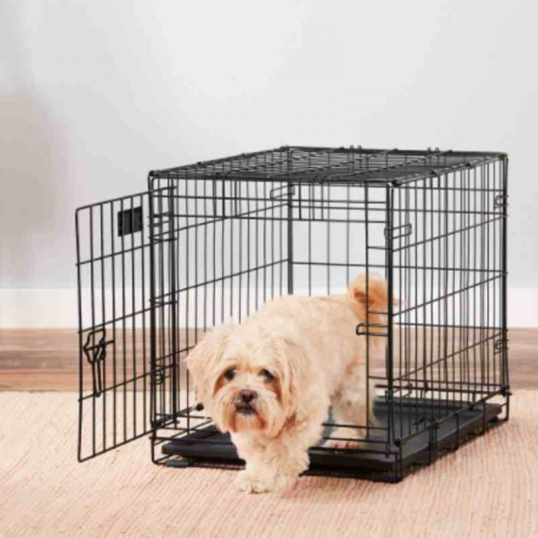 Collapsible Wire Dog Crate Fold and Carry Single Door
