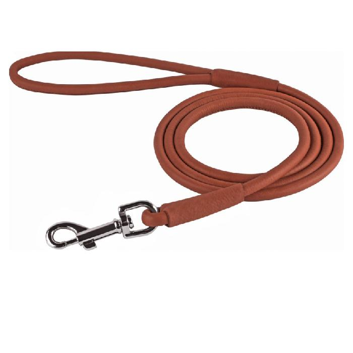 CollarDirect Rolled Leather Dog Leash 6-feet long Brown