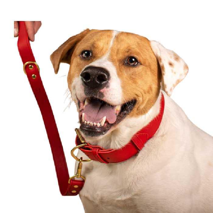 Signature Red Leather Dog Leash