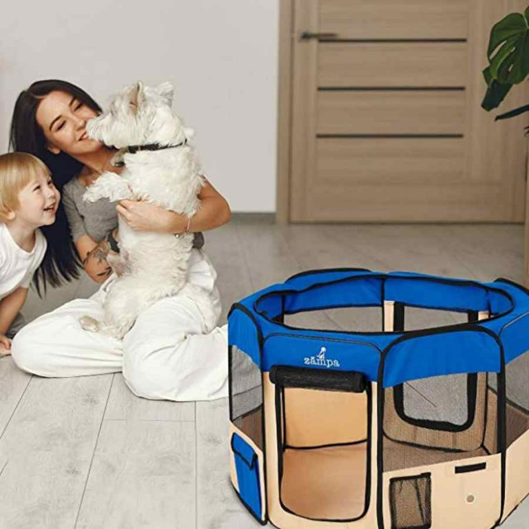 Read more about the article Dog Playpens