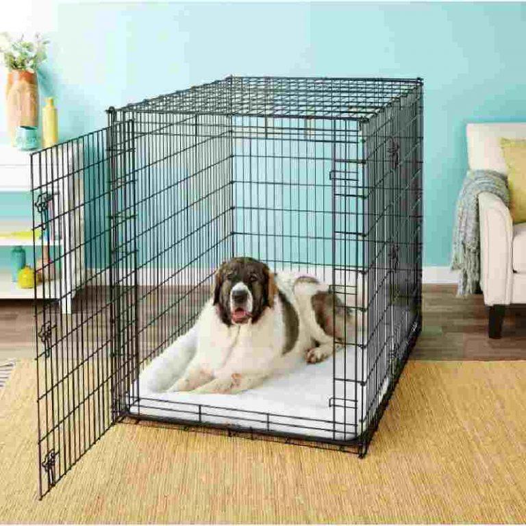 Frisco XX-Large Heavy Duty Double Door Wire Dog Crate