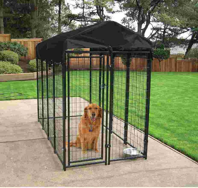 heavy duty outdoor dog kennel with roof