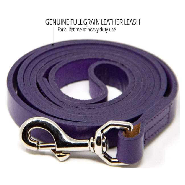 Logical Leather Genuine Full Grain Leather Dog Leash For Training