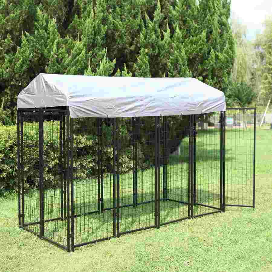 Large Outdoor Kennel Dog Run