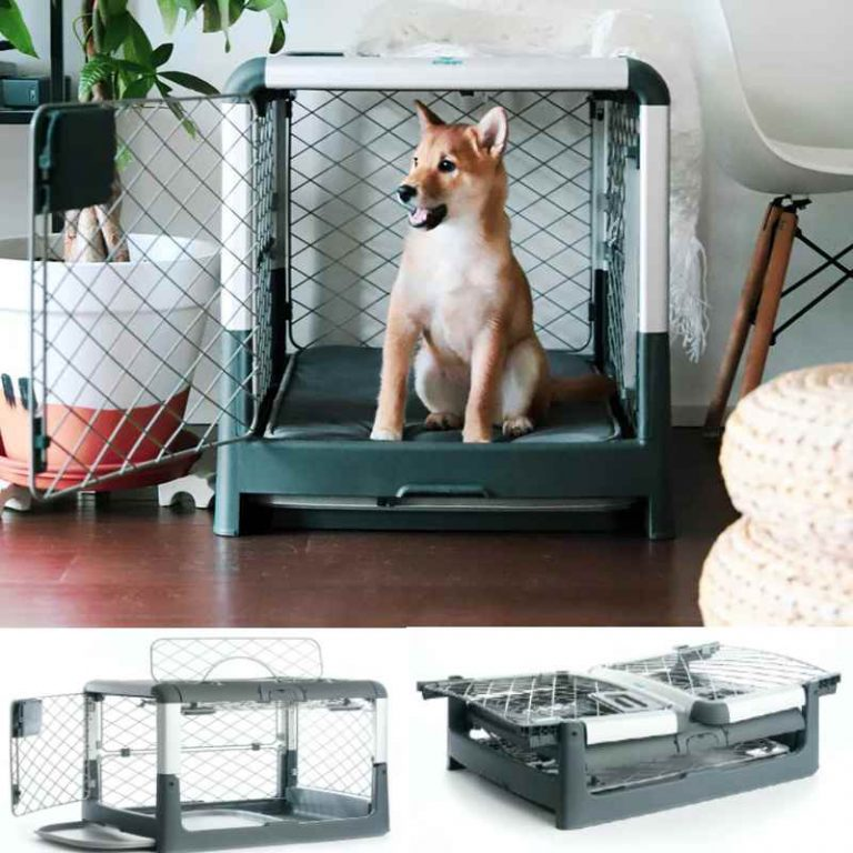 Collapsible Dog Crate - Portable, Foldable Crate by Diggs
