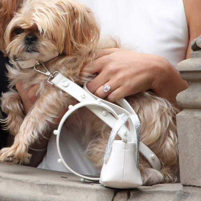 luxury leather dog leash white