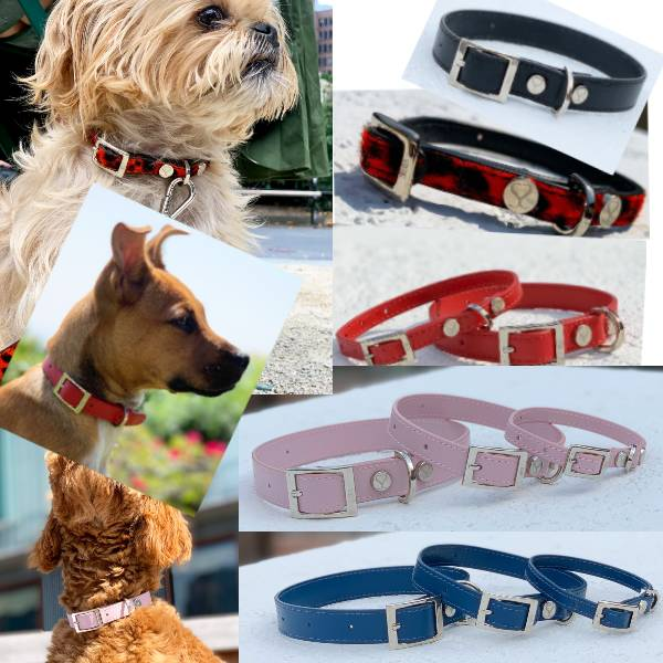 Luxury Leather Collars For Dogs
