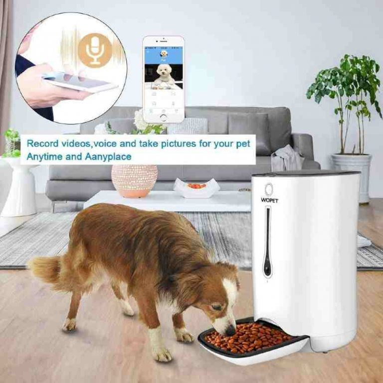 WoPet SmartFeeder - Auto Dog Feeder with timer, voice and video
