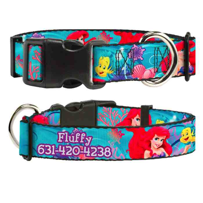 uckle-Down Polyester Personalized Dog Collar