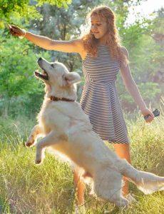 Dog silencer