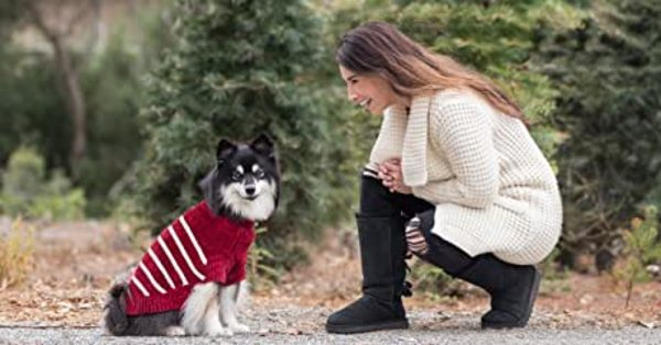 Read more about the article Dog Sweaters