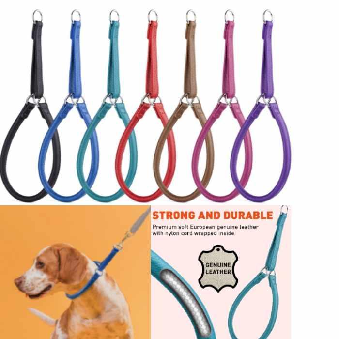 Soft Leather Martingale Dog Collar