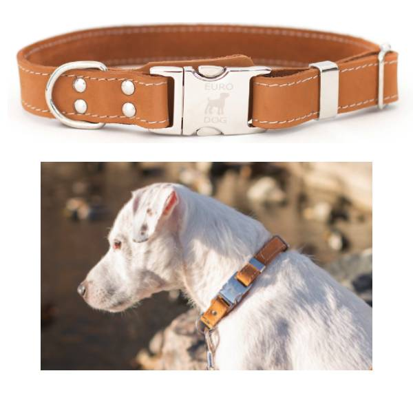 Euro Dog Quick Release Leather Dog Collar