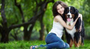 Hyrolyzed Protein Dog Food