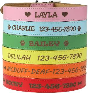 Engraved Personalized Leather Dog Collar