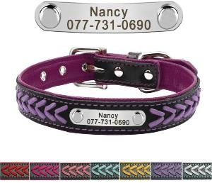 Personalized Nameplate Dog Collar