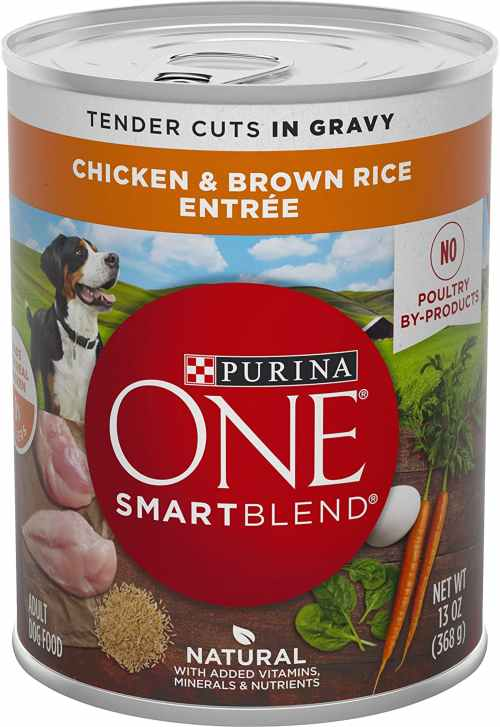 Purina One canned dog food