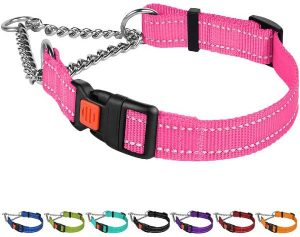 Reflective Martingale Dog Collar