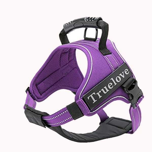 True Love Dog Harness