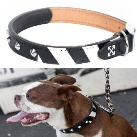 Fresh Pawz - Quotation Mark Leather Collar