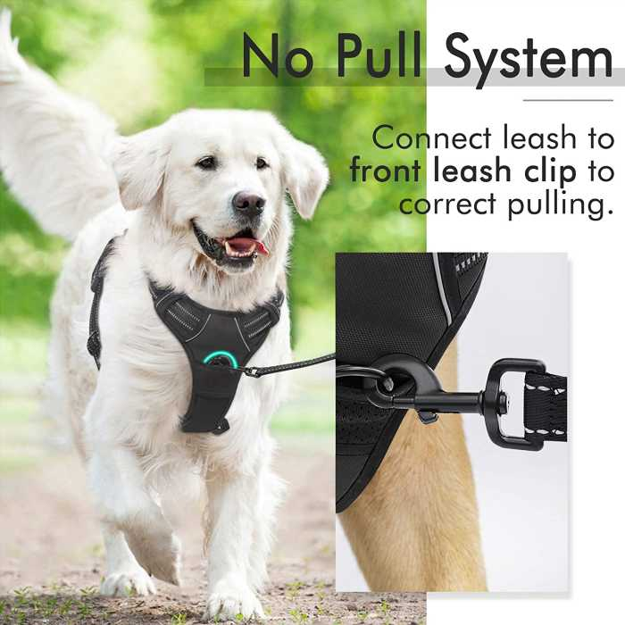 No pull dog harness with front leash clip