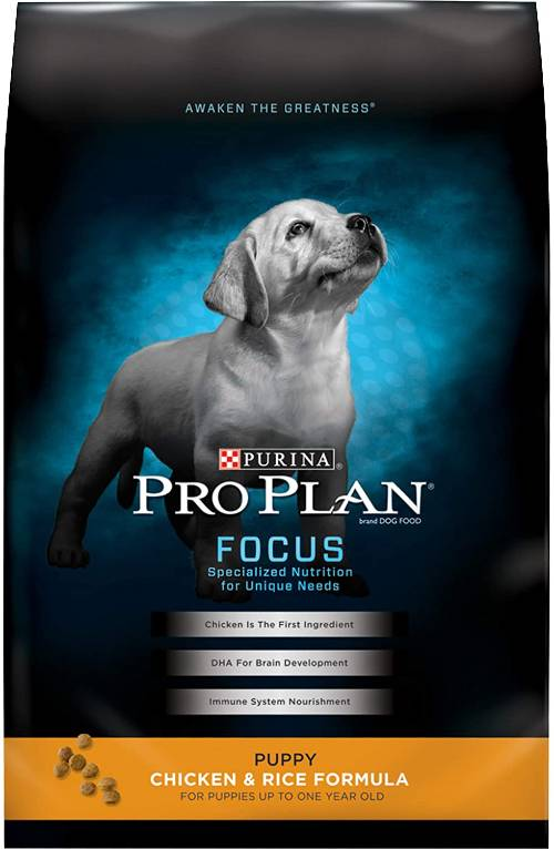 Best Dog Food Brands for Puppies