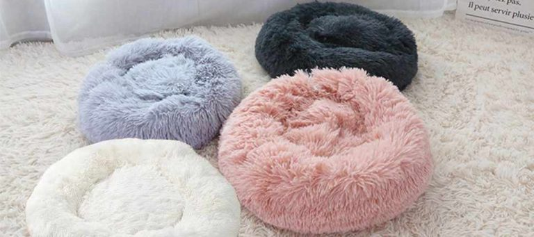Read more about the article Calming Dog Beds