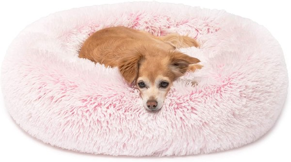 Friends Forever Calming Dog Bed