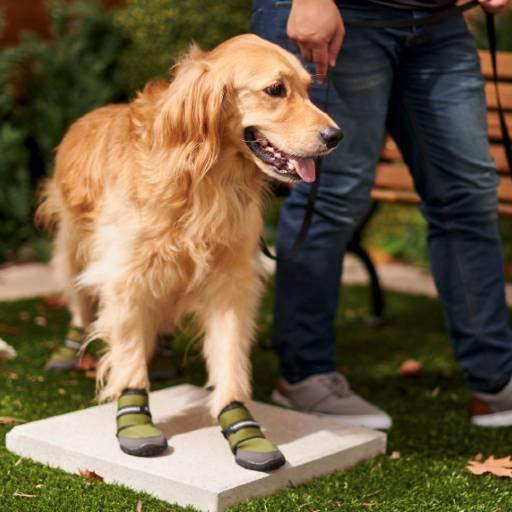 Frisco Anti-Slip Rubber Soles Wrap Dog Shoes