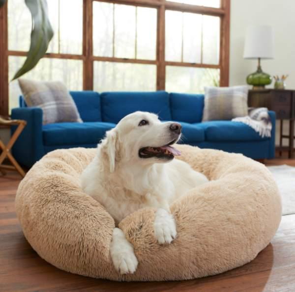 Frisco calming dog bed